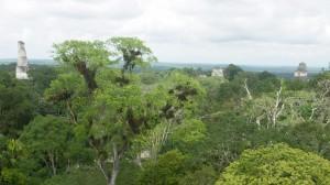 Guatemala-PICT0227ps